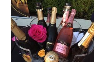 Colectia de la Vino Domus te inspira pentru cina romantica de 8 martie!
